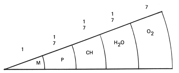 M=Minerals, P= Protein, CH=Carbohydrates, H2O=Water, O2=Oxygen